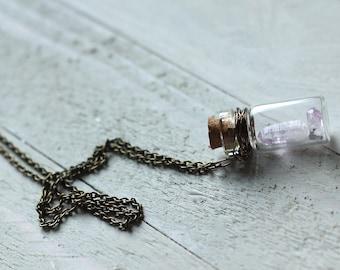 mini vera cruz amethyst points in glass bottle necklace / curio necklace rare crystal specimen