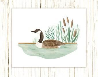 Canada Goose Print -- bird art -- bird art 52 birds stephanie fizer coleman illustration green brown