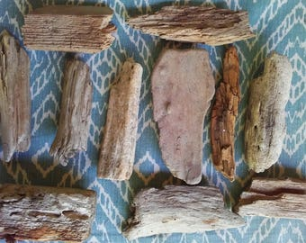 11 Pieces of Driftwood