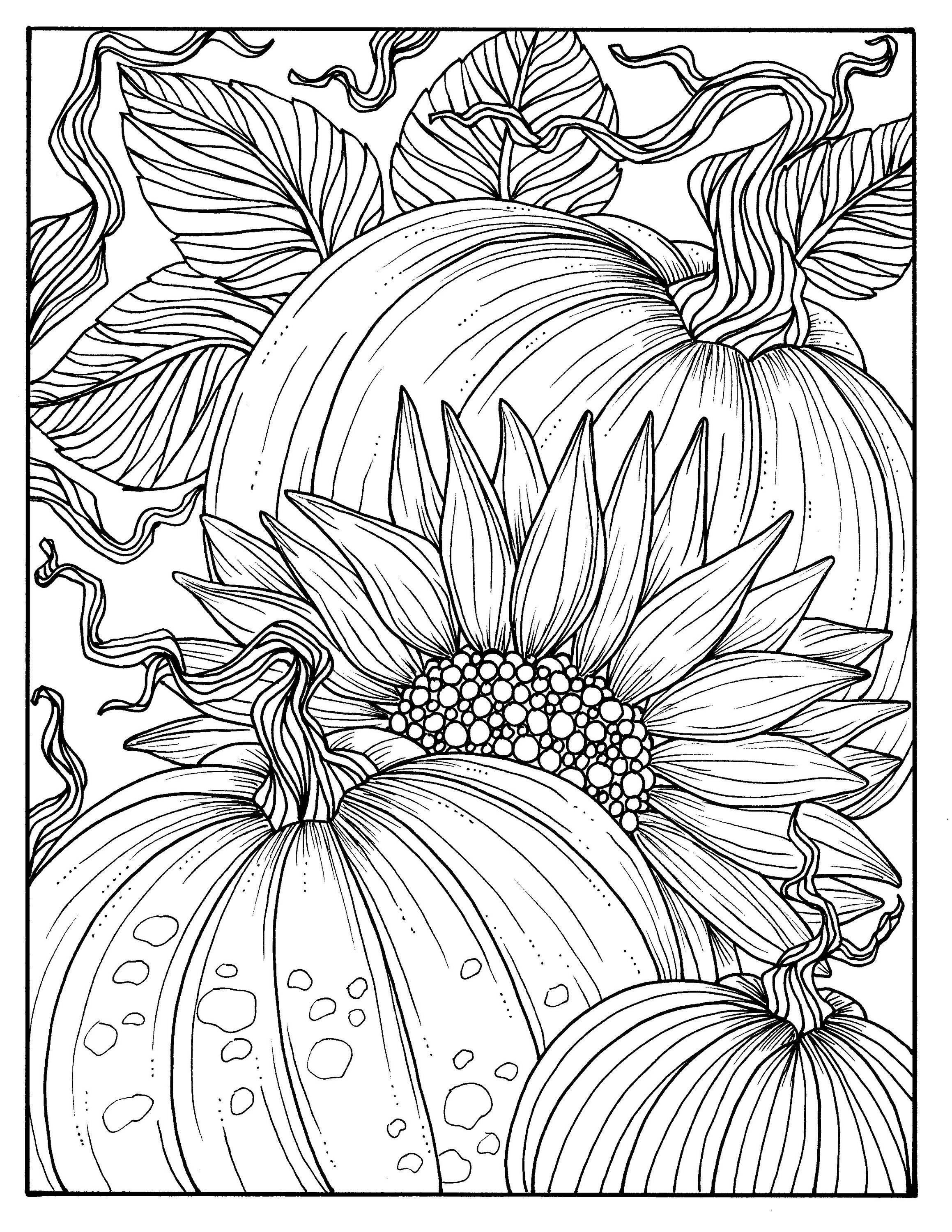 Coloring Pages For Adults Autumn : 5 Pages Fabulous Fall Digital Downloads to Color Punpkins