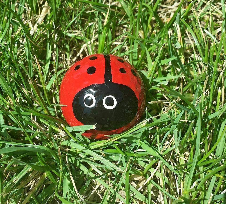 LadybugGolfballHandpainted GolfballLadybug