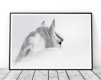 Black and White Horse Print, Horse Wall Art, Horse Photography, Animal Art, Horse Art Print, Gift for Horse Lover, Horse Decor