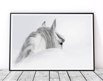 White Horse Print, Horse Wall Art, Horse Art Print, Gift for Horse Lover, Black and White Horse Print, Horse Decor, Horse Photography
