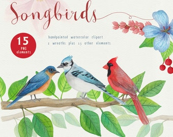 Song Bird Watercolor Clipart, Bird graphics for commercial use, red and blue birds clip art by SLS Lines