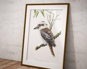 Bird print - Kookaburra Print A3 - Australian Bird Print - Australian Wildlife Print - Giclee Print