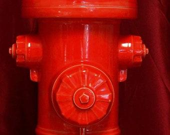Ceramic Fire Hydrant Bank by Nancy & Miki