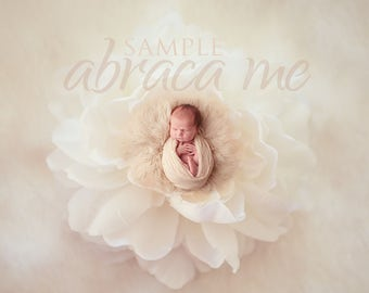 newborn digital background/flower newborn digital backdrop/instant download