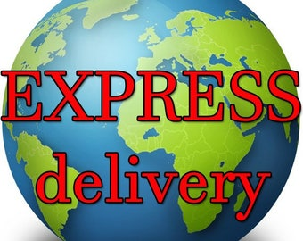 Express delivery, express shipping fast delivery fast shipping