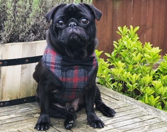 Grey and Red Tweed Harness with Bow Tie