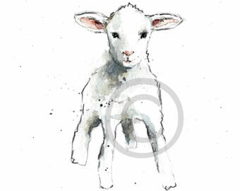 LAMB REPRODUCTION PRINT