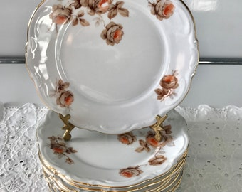 Set of 9 saucers, Norway Rose (Germany) Mitterteich Bavaria