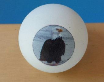 One Dozen Photo Ping Pong Balls with two sided print-Free  USA Shipping