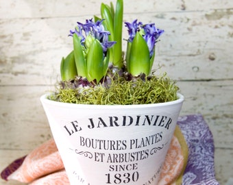 French Country Themed Planter