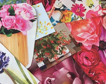 25 Magazine Clippings (Flowers)