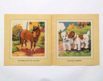 Vintage book: Friendly Animals