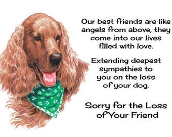 Sympathy Card for the Loss of a Dog, Pet, Puppy Irish Setter
