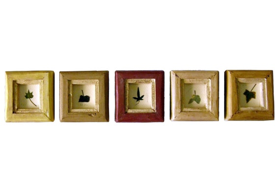 Five Ivies .  . Pressed Ivy in Cottage Frames from BlackWillowRoad ...