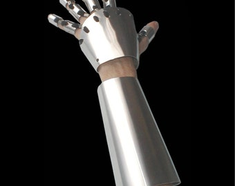 Gauntlet and Arm Cover set, both left and right hands