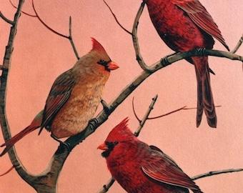 Red Cardinal Print, Wall Art, Bird Print, Cardinals, Wildlife Art, Home Decor, Wall Art, Gifts, Art and Collectibles, Painting