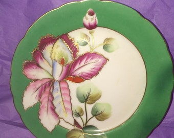 Vintage Royal Sealy China Dessert Plate | Collectible China