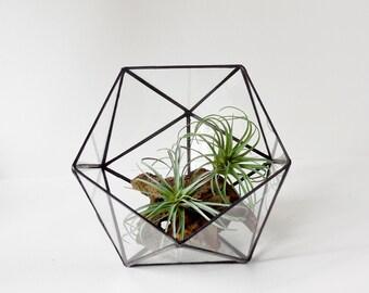 Terrarium, Icosahedron, Glass Terrarium, clear glass planter geometric terrarium. Made To Order