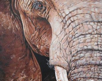Elephant Print - Mounted