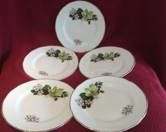 Dorchester Tea Plates