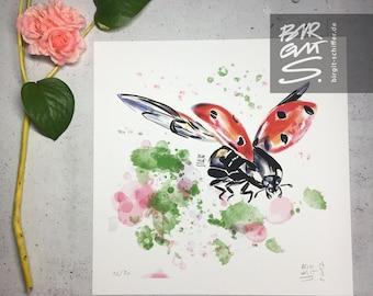 Flying Ladybug – Never ending spring in the heart