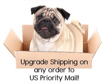 Upgrade US Shipping - Priority Mail Upgrade - Current Open Order - After Thought for Faster Shipping Time