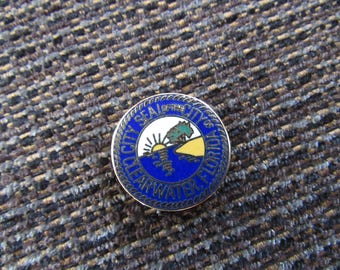 Vintage Clearwater Florida Seal of the City Pin Free Shipping