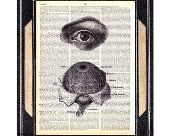 EYE ANATOMY art print optometrist ophthalmologist optometry doctor on vintage dictionary text book page anatomical human eye wall decor 8x10