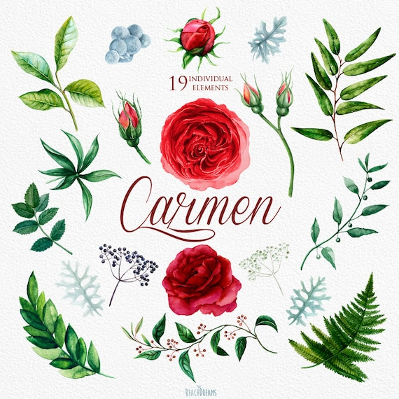 wedding watercolor flowers english roses brunia fern rh etsy com clipart for wedding invitations clipart for invitations card