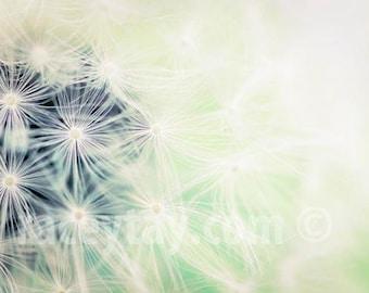 Mint Dandelion Print, White, Mint Green, Flower Photography, Baby Neutral, Nursery Decor, Pastel, Dandelion Wall Art