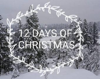 PREORDER 12 Days Of Christmas Mini Skein Christmas Advent Calendar