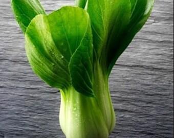 Organic Pak Choi Cabbage Heirloom Vegetable Seeds