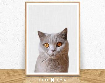 Black and White Cat Print, Nursery Wall Art, Baby Animal, Large Poste, Modern Minimalist Decor, Cat Photo, Digital Download, Grey Poster