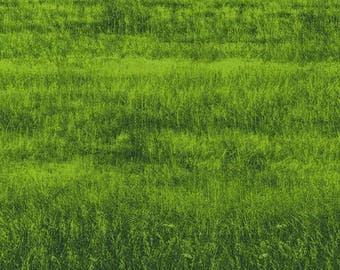 RJR Fabrics; 'Green Grass' Fabric by the Yard, Danscapes by Dan Morris, 2411-2