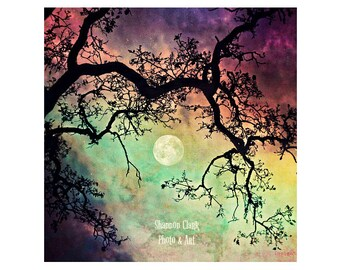 Night Sky Photo. Moon Art. Sunset. Dreamy. Surreal. Colorful. Purple. Green. Yellow. Tree branches. stars. starry.