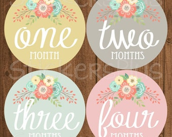 Baby Girl Month Stickers Monthly Baby Stickers, Milestone Baby Month Stickers, Monthly Bodysuit Vintage Floral Shabby Chic Cursive Script