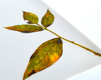Fall Leaf Platter - Hand Painted Square Serving Platter, Thanksgiving Platter, Thanksgiving Tabletop, Fall Leaves, Hostess Gift