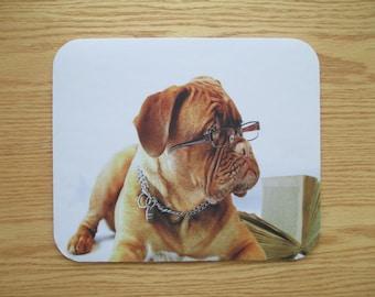 Studious Dog Mouse Pad