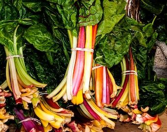 Kitchen Vegetable Wall Art,Kitchen Vegetable Decor,Rainbow Chard Photo,Vegetable Picture,Vegetable Photography,Kitchen Photo,Vegetable Photo