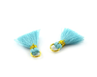 Small 2 cm set of 2 tassels / Turquoise PO74 FM