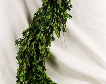 Preserved  Boxwood  Garland             Simply Beautiful  A MUST HAVE!!!!