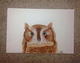 Brown Owl Acrylic Painting 12x18