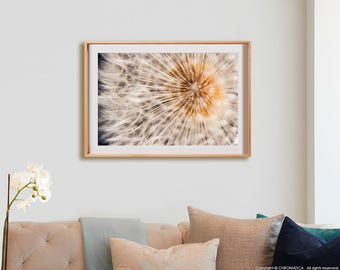 Dandelion Print.  Nature photography, macro, decor, wall art, artwork, large format photo.