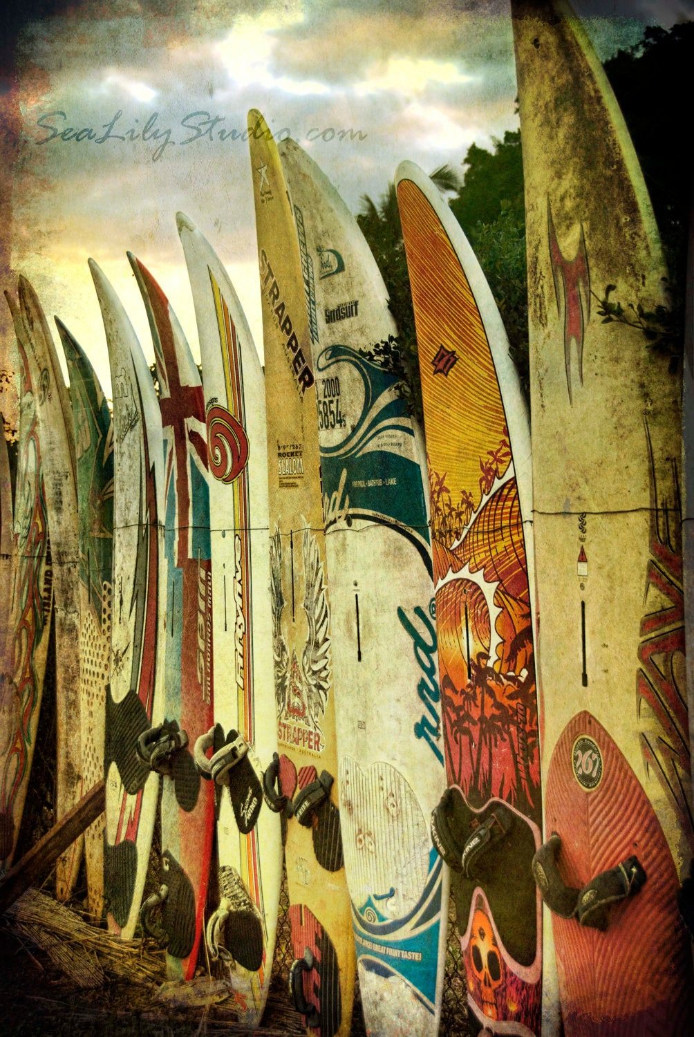 Surfboard photo 24x36 : surf photography beach surfer print