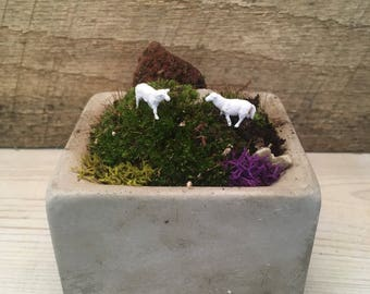 Fairy Moss Concrete Planter, with sheep, gift for dorm room, office space, get well gift,  cute, unique fun gift for hard to buy for.