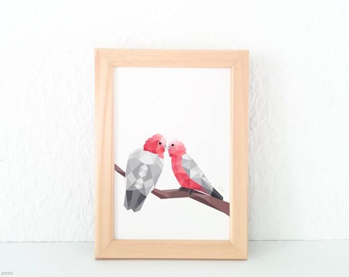 Galah print, Galah illustration, Pink and grey parrot print, Lovebirds, Bird pair print, Bird wall art, Australian galah, , Australian bird