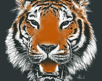 Tiger print drawing Tiger illustration poster A3 size Tiger art